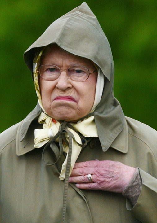 皇室婚禮「嚴重失誤」被狠批!梅根姐:一點愛都沒有
